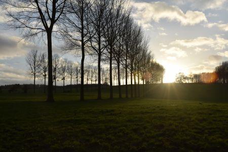 Lingering sundown